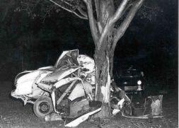 Traffic Fatality Tree