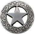 cropped-texas-star.jpg